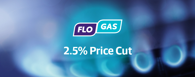 Flogas Announces 2.5% Price Cut, Saving Customers €21 a Year