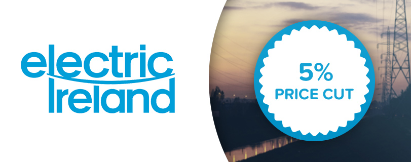 Electric Ireland announces price cut for all gas customers
