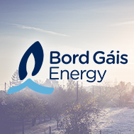 Bord Gáis Energy flash dual fuel offer